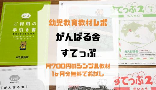 月700円からのリビング学習「がんばる舎」を初月無料で体験してみた!たっぷりのプリントに夢中!